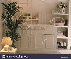 houseplant trellis platform bed above storage cupboards in space saving teenage