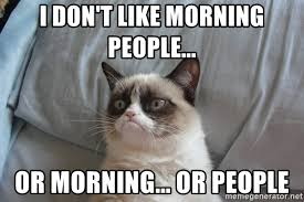Morning People Meme - i don t like morning people or morning or people grumpy cat