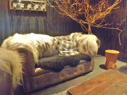 afghan hound saddle north star club review a luxury yorkshire retreat the