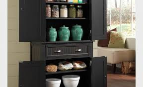Large Dvd Storage Cabinet Cabinet Engrossing Pantry Storage Cabinet With Doors Intriguing