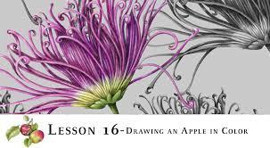 drawing online program dolgular com