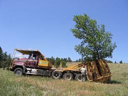 the johnson tree company tree spade tree moving