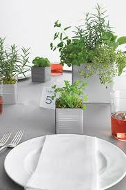 Potted Plants Wedding Centerpieces by Diy Wedding Plant Favors Are Perfect For A Green Wedding