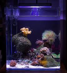 Floating Aquascape Reef2reef Saltwater And Reef Aquarium Forum - 133 best sea aquascape images on pinterest reef aquarium marine