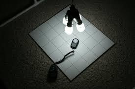 cfl grow light fixture diy cfl grow light inventgeek