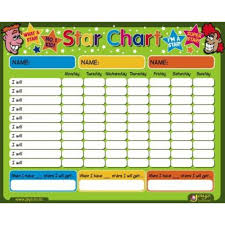 doc585570 sample star chart template free printable order form