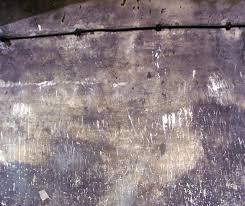 les chambres à gaz ipernity chambre a gaz mur griffe by cypora herszhorn