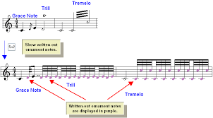editing the notation editing ornaments viewing and