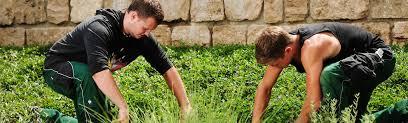 g rtner garten und landschaftsbau gärtner in garten und landschaftsbau landeshauptstadt mainz
