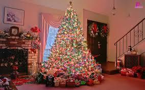 Easy Christmas Light Decoration Ideas Home Christmas Lights Christmas Light Decoration Ideas Easy