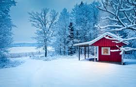 winter cabin winter cabin stock photo image of cozy forest snow 58855576