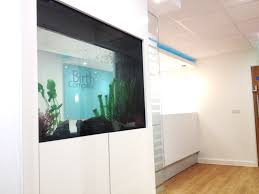 the birth company u2013 ipl design and build