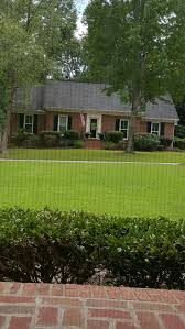 leighton green hedging cypress hello 436 best landscape front yard spring u0026 fall images on pinterest