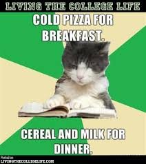 College Finals Meme - hilarious college meme compilation 37 photos college life lols