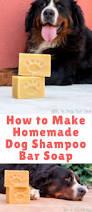 best 25 homemade dog shampoo ideas on pinterest dog shampoo