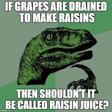 Raisins Meme - philosoraptor meme imgflip