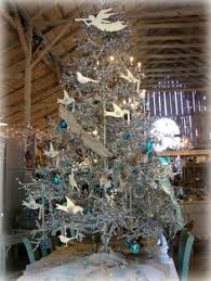 from melissa tognetti in cary north carolina christmas trees