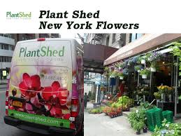 Flowers Nyc Plant Shed New York Flowers Nyc Florists