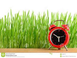 le bureau verte peu de réveil sur le bureau et l herbe verte humide d