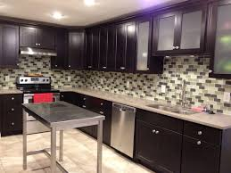 Kitchen Cabinets Kamloops Java Kitchen Cabinets With Subway Tile Backsplash And Stainless