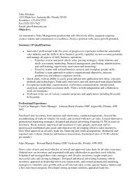 Example Resume  Sales Objective For Resume  national sales manager