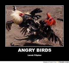 Angry Bird Meme - angry bird meme generator image memes at relatably com
