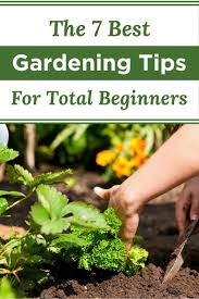 the 7 best gardening tips for total beginners your very best life