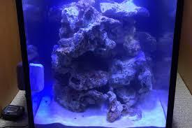 Live Rock Aquascaping Ideas To Much Live Rock Aquascaping Forum Nano Reef Com Community