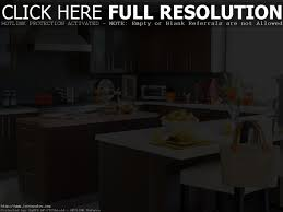 Ikea Kitchen Cabinet Review Sophisticated Ikea Kitchen Cabinets Reviews 2011 Ideas Best
