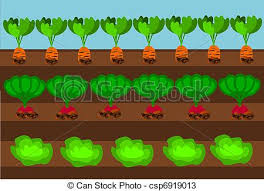 vectors of vegetable path vegetables growing on path under blue