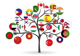 about us pics progressive intercultural community services