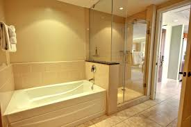 Shower And Bath Bathroom With Separate Shower And Bathtub Icsdri Org
