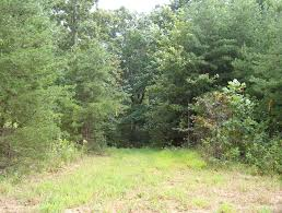 virginia mountain land homestead tract 4 land for sale by