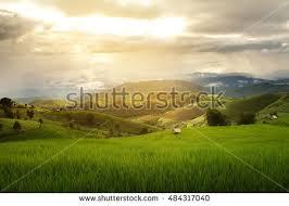 Light And Landscape - rural landscape stock images royalty free images u0026 vectors
