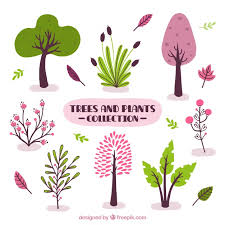 assortment of decorative trees and plants vector free