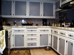 White Kitchen Cabinets Doors Best Kitchen Cabinet Doors Kitchen Design 2017