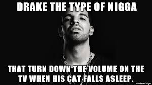 Drake The Type Of Meme - drake the type of nigga album on imgur