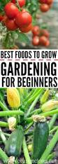 Best Flower Food Gardening For Beginners Best Foods To Grow First Vegetable