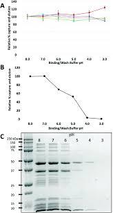 Anti Flag Affinity Gel Genetic Incorporation Of 4 Fluorohistidine Into Peptides Enables