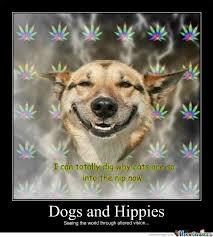 Happy Dog Meme - happy dog by hopefleeting meme center