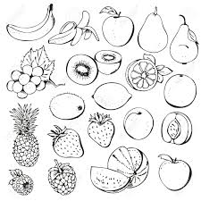 fruit black and white fruit and vegetable clipart black white logo