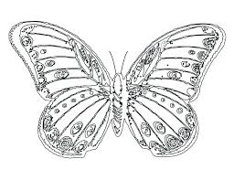 coloring page butterfly monarch free butterfly coloring pages mstaem org