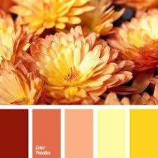 my misty morrning shades of yellow pinterest
