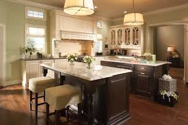 Kitchen Cabinets And Countertops Ideas by Decorating Charming Kitchen Storage Ideas With Elegant Medallion
