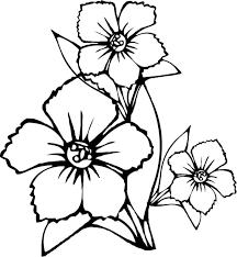 printable spring flower coloring pages weeklyplanner website
