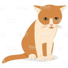 Cartoon Cat Memes - sad forlorn cat cartoon vector illustration lonely cat meme stock
