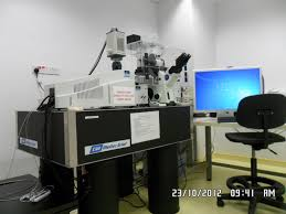 confocal microscopy laboratory nus centre for bioimaging