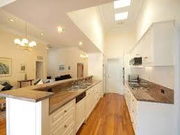 Kitchen Design Galley Galley Kitchen Design With Island Ideas Home Designs Insight