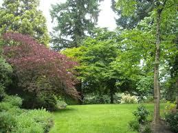 Elk Rock Garden Trees Of Every Shape And Size Picture Of Elk Rock Garden