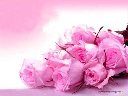 Pink Color Pink Color Wallpapers Free Download Group 79
